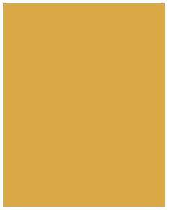 Akademie-versailles_FIN_RGB_zlata-web